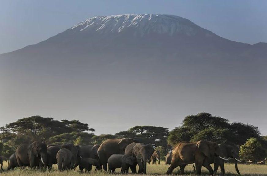 ČUDO IZ BRITANIJE Ima šest godina, DVA PUTA osvojila Kilimandžaro, a san joj je Mont Everest (FOTO)