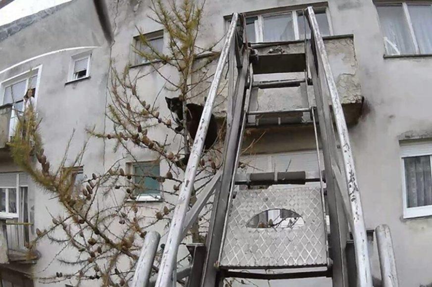 VATROGASCI ODUŠEVILI SUGRAĐANE Prijedor im od srca tapše, spasli mačku sa drveta (FOTO)