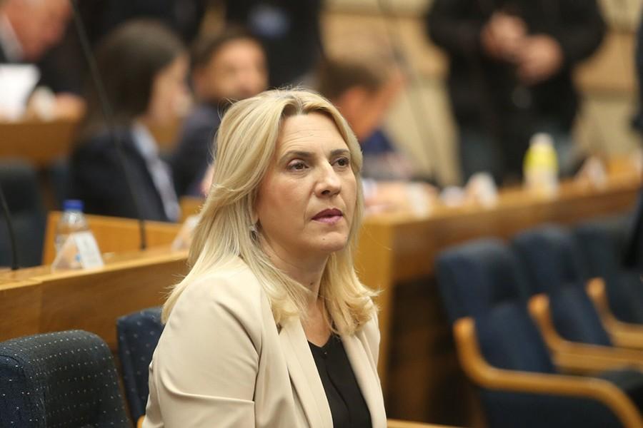 Cvijanović: U okviru ustavne strukture BiH najviše stradala Srpska sa svojim ovlaštenjima