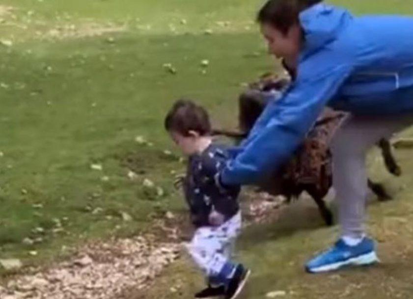 DRAMATIČAN SNIMAK Majka u posljednjem trenutku spasla dijete od razjarenog ovna (VIDEO)