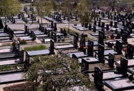 Haos na groblju: Divlje svinje oštetile više grobova