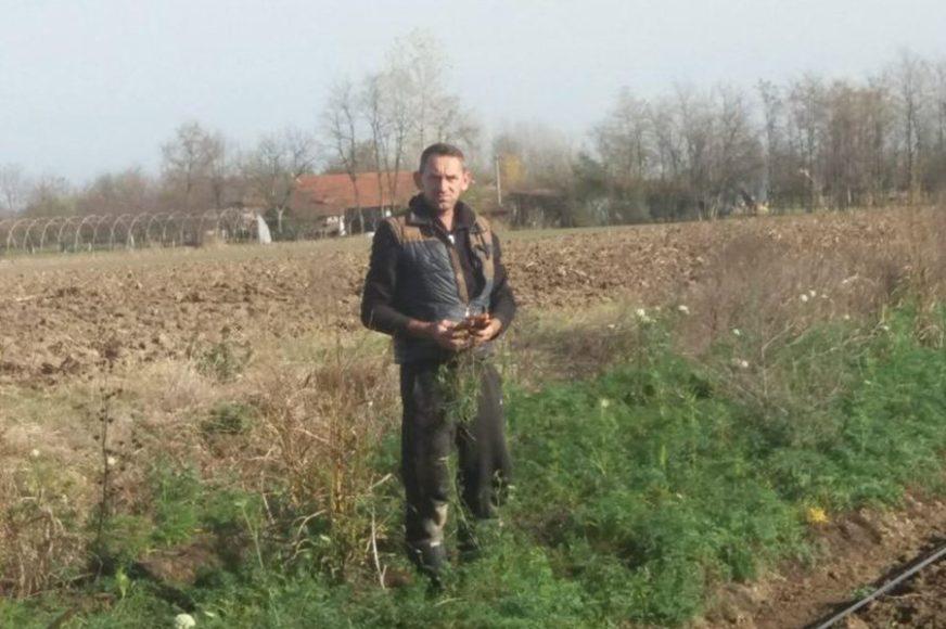 Treća generacije Hadžića iz Janje u poljoprivredi: Povrće ekstra kvaliteta, ali nemaju ga kome prodati