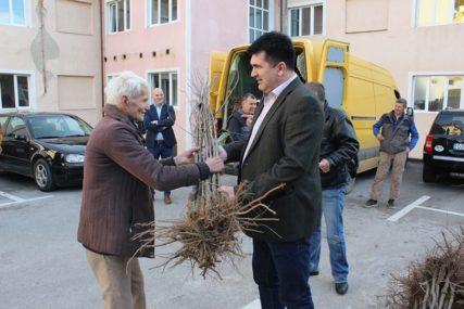 DONACIJA IZ AUSTRIJE Načelnik Lopara dodijelio 4.000 sadnica šljiva poljoprivrednicima
