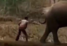 VIŠE MU NEĆE PASTI NA PAMET Udario je slona štapom kako bi ga otjerao i ubrzo ZAŽALIO (VIDEO)