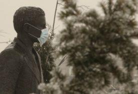 KAKO PREGURATI KORONA ZIMU Žestoka borba za opstanak, OPTIMIZAM kao lijek