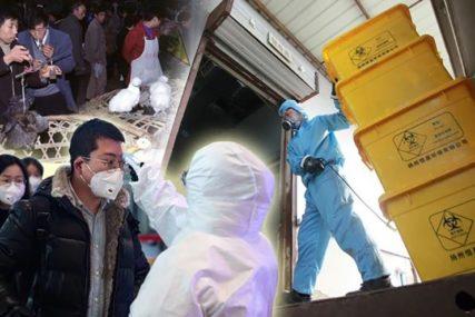 Katanac na vrata zbog STRAHA OD ZARAZE: Koronavirus nastavlja da ZATVARA FABRIKE
