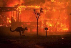 OČAJNIČKI POTEZ Australijske vlasti planiraju da ubiju oko 10.000 kamila jer PIJU PREVIŠE VODE