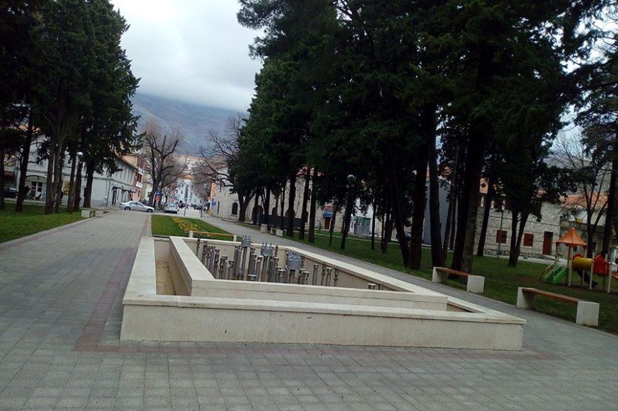 Foto: D. Čolović/RAS Srbija