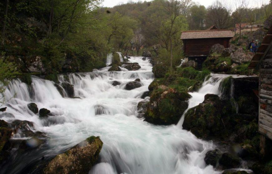 FOTO: SINIŠA PAŠALIČ /RAS SRBIJA