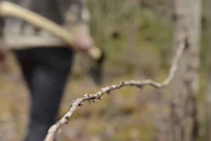 Nakon tuče uhapšen mladić: Muškarca više puta udario drškom sjekire u glavu