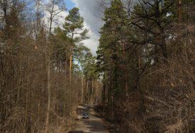 U TOKU AKCIJA SPASAVANJA Četiri žene se izgubile, u potragu krenuo i šumar