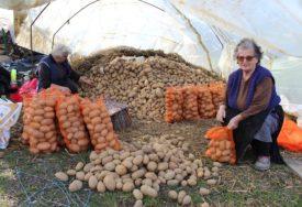 Vrijedne domaćice iz Miljevića kod Nove Topole: Prvoklasni krompir za domaće tržište
