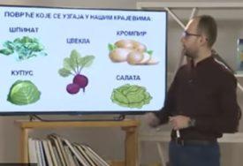 Nastava na daljinu uz SRPSKAINFO: Sedmaci iz biologije učili o gmizavcima (VIDEO)