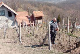 ČAŠA VRANCA I TAMJANIKE SA PADINA MAJEVICE Loparski vinogradari dokazali da šljiva nije jedina kraljica