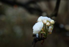 ZABIJELILE SE PLANINE Na Bjelašnici pao prvi ovosezonski snijeg