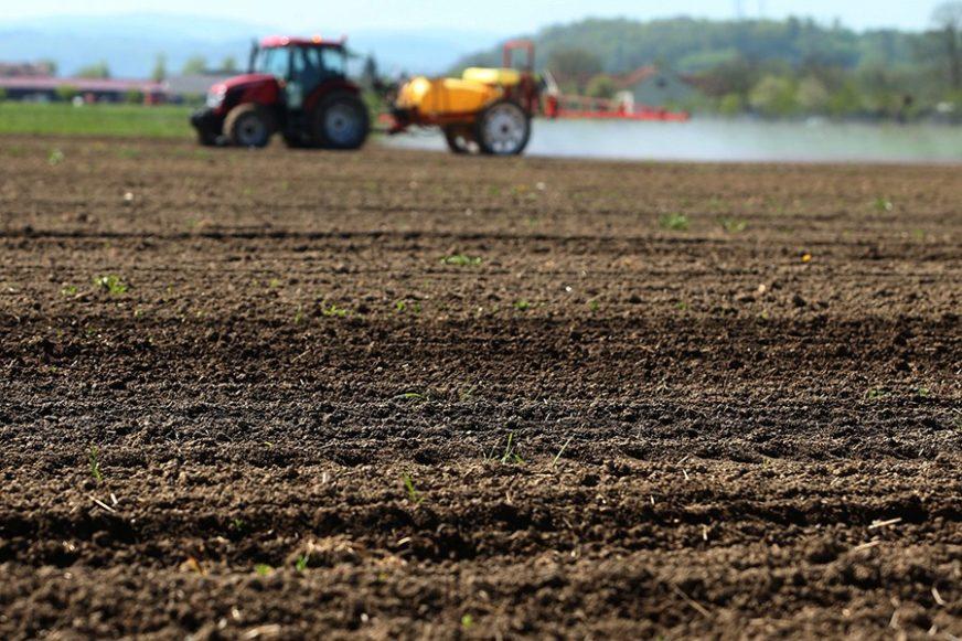 Veliki interes građana za poljoprivredu: Grad u zakup dao 15,4 hektara oranica