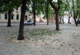 PRIRODA JE ODGOVORILA Kupaca i turista nema, ali je zelena pijaca u Trebinju IPAK POZELENILA