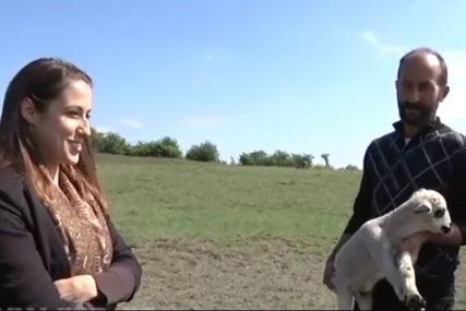 BEOGRAD ZAMIJENILA PAŠNJACIMA Zaljubila se u Branislava i sada zajedno čuvaju ovce i koze