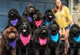 NA HUMANOJ MISIJI Makenzi i njeni psi posjećuju ljude u bolnicama i pružaju im nadu (FOTO)