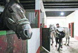 GLUMAC VRIJEDNO RADI U ŠTALI Strugar brine o 13 konja na salašu (FOTO)