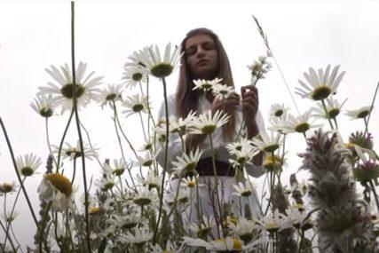 Bijela rada ili grančica vrbe: Na veliki praznik Cvijeti cvijeće ima POSEBNU SIMBOLIKU