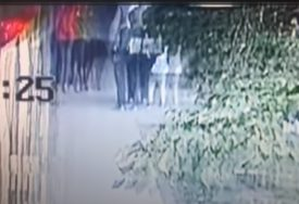 ŠOK NA ULICI Nasred trotoara ROTVAJLER SKOČIO na dijete i baku (VIDEO)