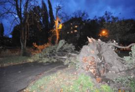 POVRIJEĐENA DJEVOJKA (18) TOKOM NEVREMENA Drvo palo na nju u kampu u Apatinu