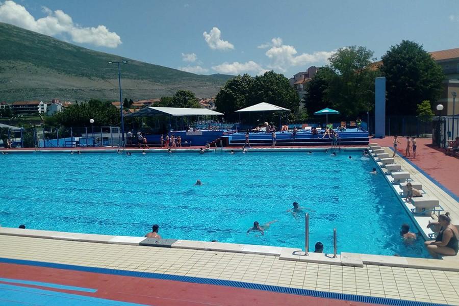 Foto: Dubravka Čolović/RAS Srbija