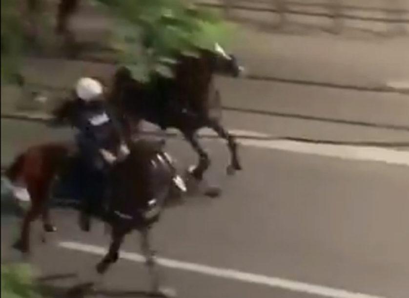 Konjička policija uradila ono što NISU USPJELA oklopna vozila (VIDEO)