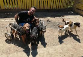 MOMAK ZLATNOG SRCA Jovica je svoj dom pretvorio u utočište za 50 pasa sa invaliditetom