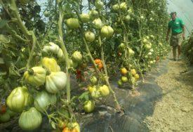 Za poljoprivrednike u Lijevče polju stižu BOLJI DANI: Otkupnim centrima rješavaju problem prodaje