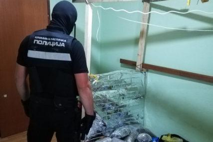 """MEĐUNARODNA AKCIJA """"SKRADIN"""" Poznata imena uhapšenih dilera"""