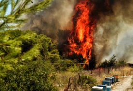 BUKTINJA KOD BILEĆE Požar u blizini tunela Vodostan