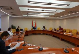 DELEGATI NE MOGU PODNOSITI ZAHTJEVE Zasjedao Odbor za ustavna pitanja