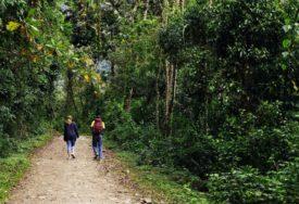 Mali pomaci u očuvanju prirodnih dobara: Banjaluka želi da zaštiti tri šumska kompleksa