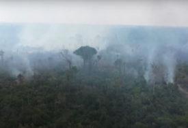 PLUĆA PLANETE JEDVA DIŠU Za 24 časa u Amazoniji zabilježeno više od 1.000 požara (VIDEO)