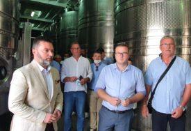 ZAŠTITA DOMAĆE PROIZVODNJE Košarac: Biće predložena zabrana uvoza grožđa na 90 DANA