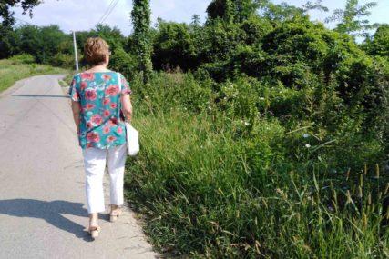 APEL UZ PODSJEĆANJE NA KAZNE Ministarstvo poljoprivrede RS: Blagovremeno uklonite ambroziju sa svojih parcela