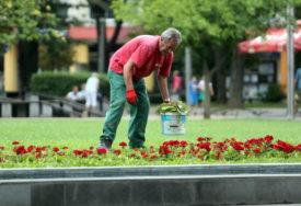 CIDEA sa partnerima organizuje više događaja povodom Dana grada