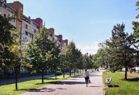 """Banjaluka se pridružila akciji """"Tvoj CO2"""": Rast stabla se može pratiti preko digitalne platforme"""