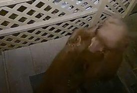 """""""BILI SU NAM ISPRED VRATA"""" Porodicu iznenadila borba medvjeda pred kućom (VIDEO)"""