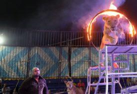 """""""VRIJEME DA OTVORIMO NOVU ERU"""" Zabranjuju se divlje životinje u cirkusima"""