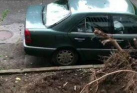 OLUJA U PODGORICI Vjetar obarao stabla, uništeno više automobila (VIDEO)