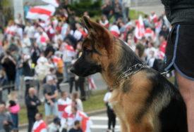 ŽIVOT VAM JE SIROMAŠAN BEZ NJIH! Predstavljamo 15 bezuslovno vjernih pasmina pasa