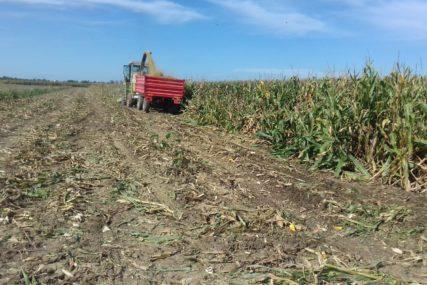 Farmeri preklinju za pomoć, iz resornog ministarstva NEUMOLJIVI: Ovogodišnja suša nema karakter elementarne nepogode