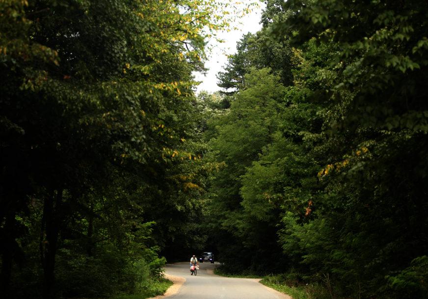BOTANIČKA BAŠTA NA OTVORENOM Za arboretum u Trapistima daju milion maraka