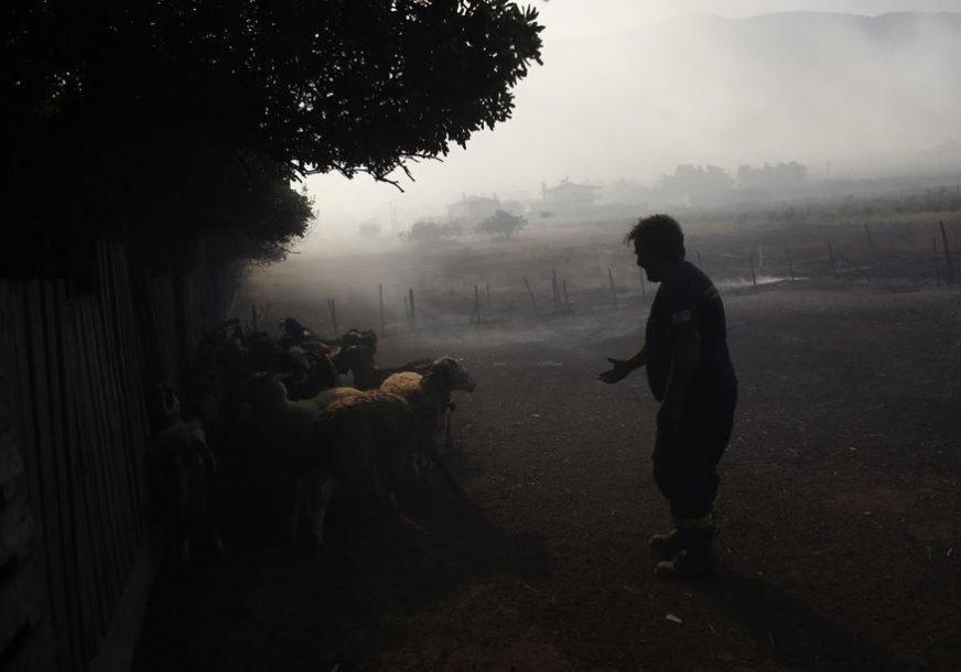 """IZDALI STE FARMERE"" U Poljskoj protesti protiv zabrane uzgajanja životinja radi krzna"
