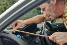 ZAPALACALA MU JEZIKOM PRAVO U LICE Vozio je kada mu se oko volana POJAVILA ZMIJA (FOTO)