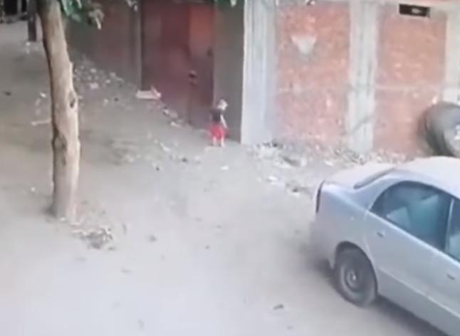 DOK JE ONA ČUVALA BEBU, MAČKA JOJ SPASLA SINA Pas je nasrnuo na dijete na metar od majke (VIDEO)