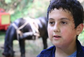 Ima 12 godina i svaki dan ide u šumu: Ratko se u cik zore prihvata posla koji rade samo najhrabriji (VIDEO)